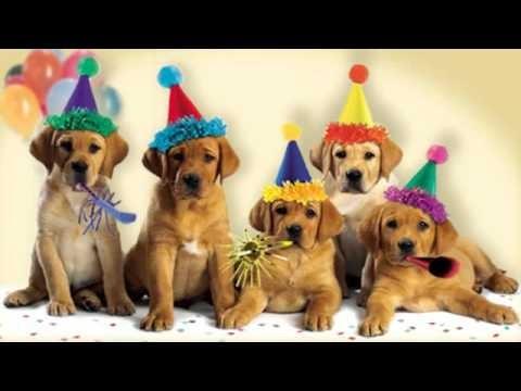 Tarjetas bonitas de cumpleaños con animales