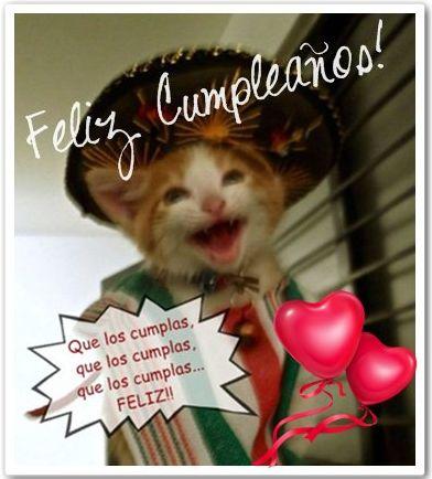 tarjetas de cumpleaños graciosas 15 gato cantando