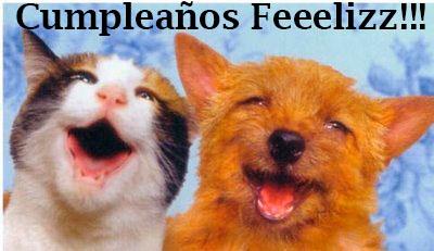 tarjetas de cumpleaños graciosas 17 perro y gato riendo